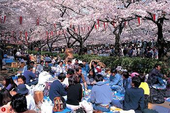 Du lịch Nhật Bản - www.TAICHINH2A.COM