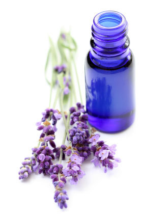 lavendar-essential-oil-655680-1368107927