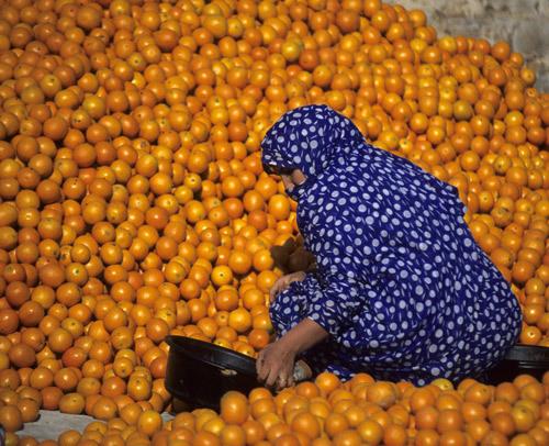 morocco-9-525020-1368146638_500x0.jpg