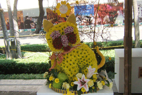 Một chú mèo két bằng hoa dễ thương rất nhiều người thích thú.