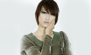 Huyền Trang từng thi Vietnam Idol