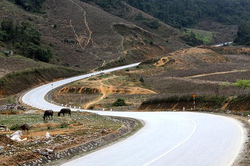 Con đường đèo uốn lượn đẹp mắt ở Mộc Châu.