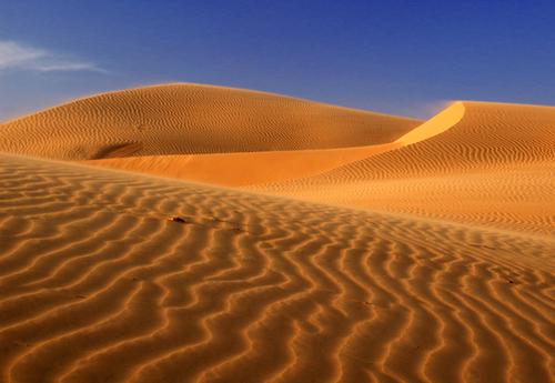 Điểm đặc biệt ở đây là những cồn cát đỏ như sa mạc nối nhau trùng điệp như núi.