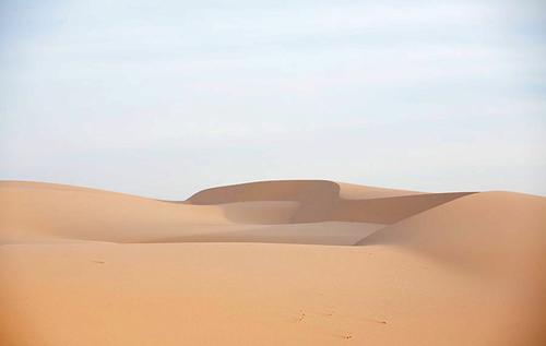 Những đụn cát mịn có hình dáng uốn cong mềm mại tạo nên cảnh tượng tuyệt đẹp.