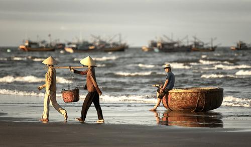 Mỗi sáng sớm, những người phụ nữ đều gánh cá ra bán ngay trên bãi biển.
