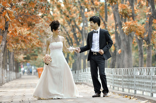 Hai hàng cây chuyển lá vàng vào mùa thu trong bộ ảnh 'Giấc mơ thành hiện thực'.