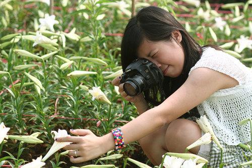 Cô gái chụp ảnh những bông hoa trắng.