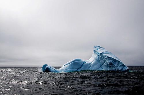 Vào mùa xuân, những tảng băng lớn với đủ hình dạng sẽ trôi nổi khắp bờ biển Labrador và Newfoundland.