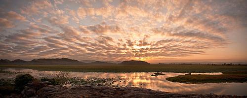 Công viên quốc gia Kakadu là vùng đất hoang sơ, trải dài trên diện tích 200 km2 nằm ở phía nam thành phố Darwin. Các nhà chức trách ở Australia mong muốn duy trì được vẻ hoang dã của tự nhiên, để các loại động vật sinh sống thuận lợi.