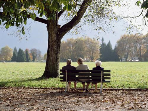 Những người bạn già ngồi ngắm cảnh trong công viên Interlaken, gần thủ đô Bern, Thụy Sĩ.