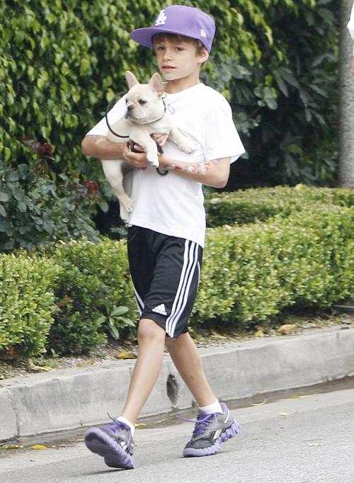 Romeo bế cún cưng Scarlet đi dạo hôm 13/6 với hình vẽ trên tay.