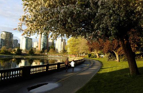 Ở đây cũng có bốn mùa với khung cảnh thay đổi rõ rệt. Trong ảnh là con đường trong tiết trời mua xuân, hoa nở trắng.