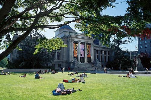 Mọi người nằm trên bãi cỏ để tắm nắng vào mùa xuân.