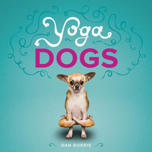 yoga-16-494806-1377109229.jpg