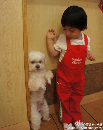 Bé Kimi bắt chước dáng đứng ngộ nghĩnh của chú cún.