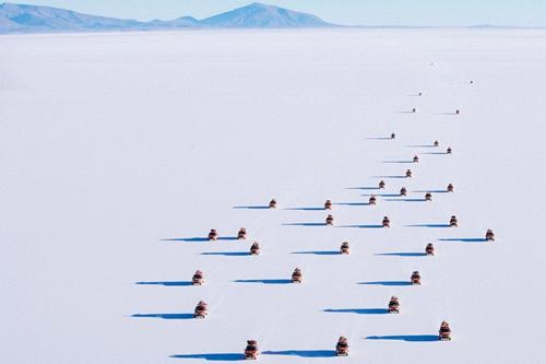 Những đoàn xe ôtô chở khách đi tham quan sa mạc nối đua nhau đi trong nắng.