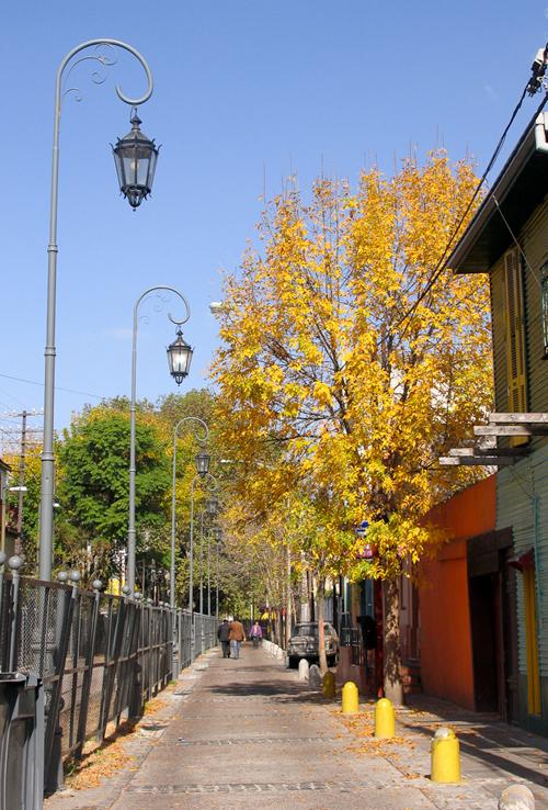 Vào mùa thu, lá cây ở La Boca đổi màu vàng rực, càng khiến thị trấn thêm rực rỡ.