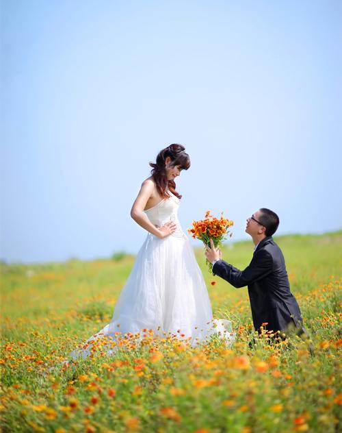 Cô dâu Nguyễn Ngọc Mai tâm sự, sau đúng 3 năm yêu nhau, đám cưới của bạn và chú rể đã diễn ra. Bộ ảnh của bạn chụp ở Nghệ An, trên cánh đồng hoa, bãi biển và những đồi chè xanh bạt ngàn