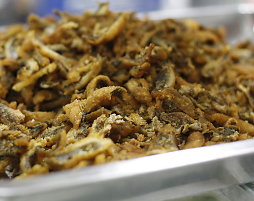 Cá rô, cá quả hay được sử dụng trong món bánh đa, bún cá.