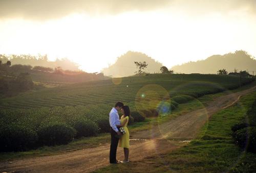 Khung cảnh lãng mạn dưới ánh bình minh ở Mộc Châu.