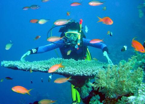 Lặn biển là hoạt động được nhiều người yêu thích khi tới Nha Trang. Ảnh: Nhatrangtour.