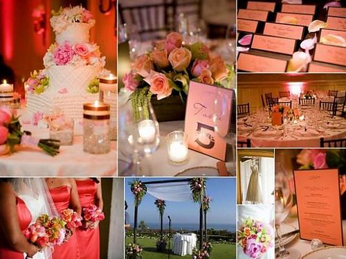 Màu hồng đậm và màu trắng cũng là cách kết hợp màu sắc nên thử.