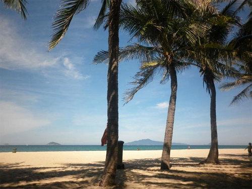 Bãi biển Cửa Đại, TP Hội An, Quảng Nam với hàng dừa rợp bóng.