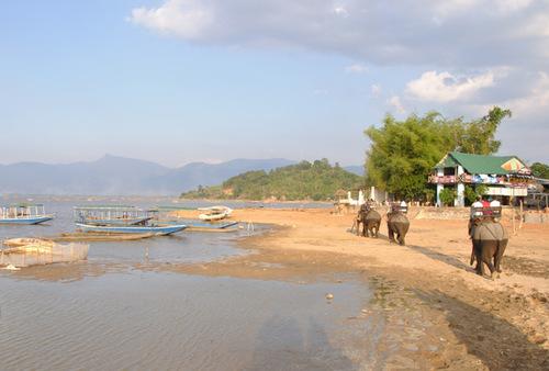 Hãy thử một lần cưỡi voi để khám phá Hồ Lắk, chắc chắn bạn sẽ có được những cảm giác mà không nơi đâu có được.