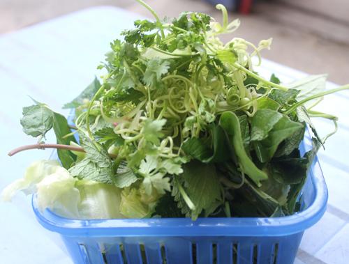 Rau sống tươi ngon với các loại rau quen thuộc của đất Bắc như: kinh giới, húng quế, húng lủi, rau muống, xà lách...