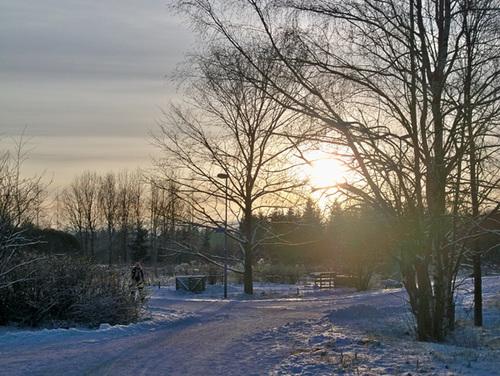 Tuyết lấp lánh dưới ánh nắng mặt trời.