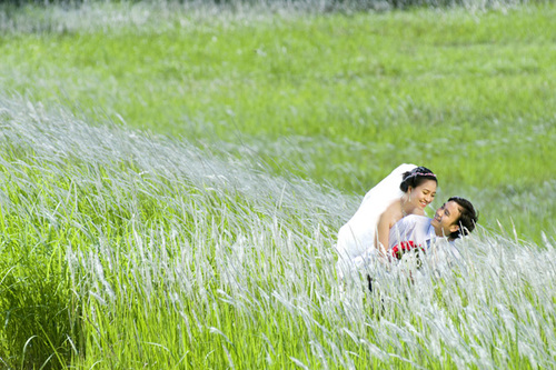Bộ 'Hạnh phúc tỏa hương' với những tấm hình tuyệt đẹp trên cánh đồng lau trắng.