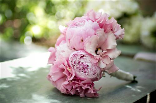 Hoa mẫu đơn bó cùng lan tường hồng, tạo thành bó hoa cầm tay đẹp.