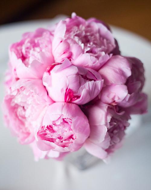 Bó mẫu đơn hồng đẹp tinh tế.