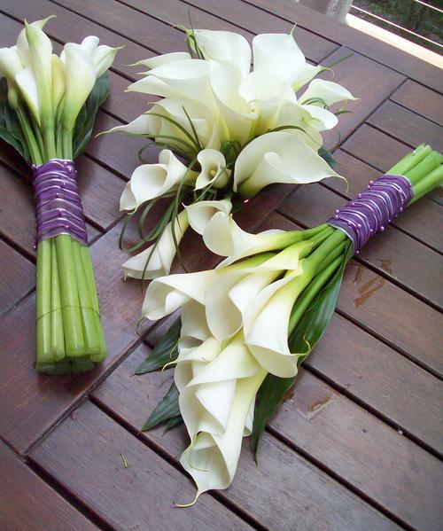 Hoa rum cũng là một trong những loại hoa phổ biến, được sử dụng nhiều trong đám cưới.