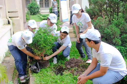 Họ tự tay đào hố để trồng cây.