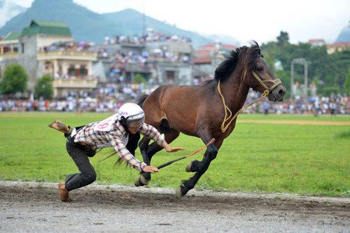 Một nài ngựa không may bị ngã trên đường đua.