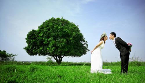 Khung cảnh xanh mướt ở vườn nhãn là điểm thu hút các đôi uyên ương tới chụp ảnh cưới.