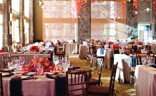Không gian tiệc trong nhà cũng sử dụng hai gam màu tương phản là xanh thẫm và cam hồng để trang trí.