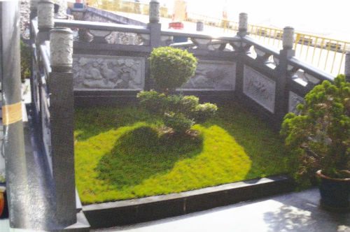 Cây cảnh và cỏ cây xung quanh ngôi nhà mồ.