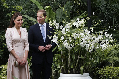 The Duke and Duchess of Cambridge look at an orchid named after Prince William's mother Diana, Princess of Wales, during their first engagement in Singapore