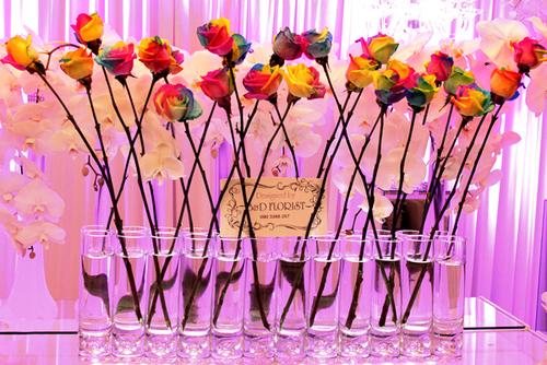 Hoa hồng bảy sắc cầu vồng gây ấn tượng mạnh vì vẻ đẹp độc đáo.