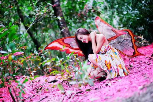 Trong bộ trang phục được thiết kế riêng để diện cùng cánh bướm, trông Vy Oanh rất xinh đẹp và dịu dàng.