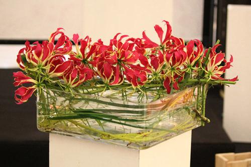 Mẫu hoa triển lãm ấn tượng với hoa Ly Lửa