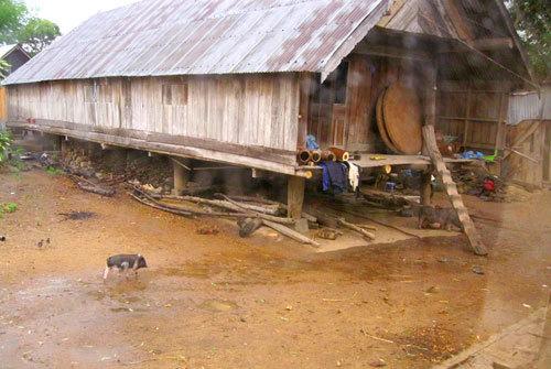 Nhà dân được làm bằng gỗ, tre, nứa.