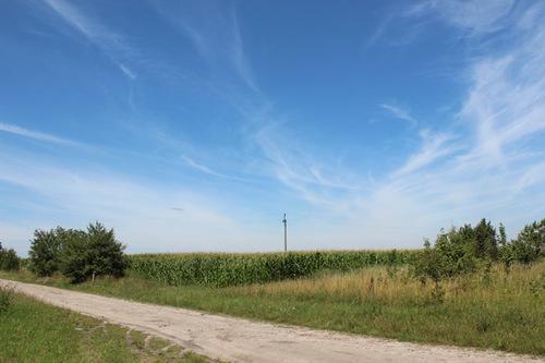 Bầu trời trong xanh, những cánh đồng bát ngát tạo nên khung cảnh thanh bình nơi đây.