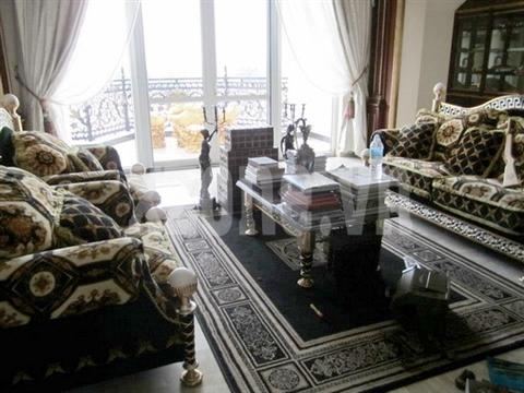 Phòng khách bài trí theo phong cách Châu Âu, cầu kỳ và tỉ mỉ tới từng chi tiết.