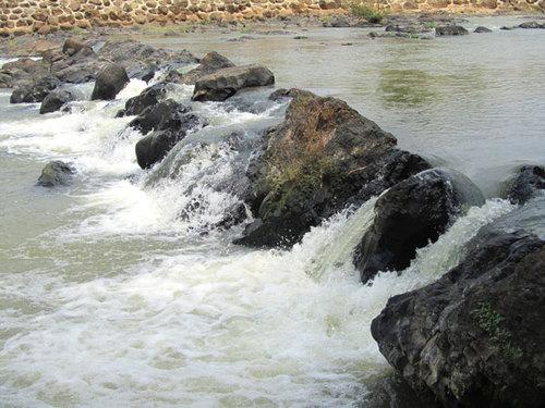 Dòng suối nước trong veo róc rách chảy.