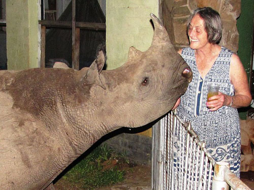The docile rhino, was orphaned when his mother was cruelly shot by poachers in South Africa in 2007