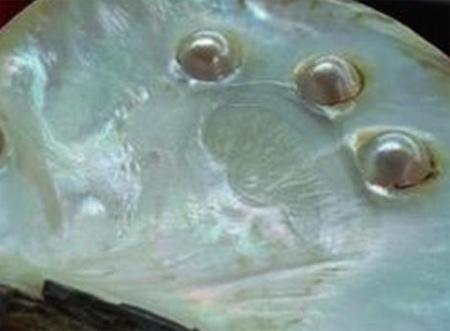 Hạt tiêu phú quốc với vị cay nồng đặc trưng.