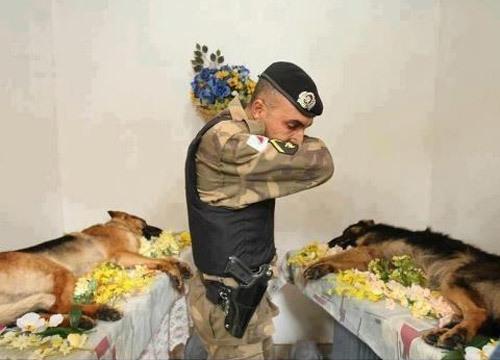 Mọi anh hùng đều xứng đáng nhận được sự trân trọng!